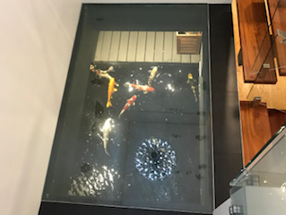 Suspended Glass Floor - Bayswater